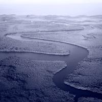 Apuntes sobre la entropía y la novela río